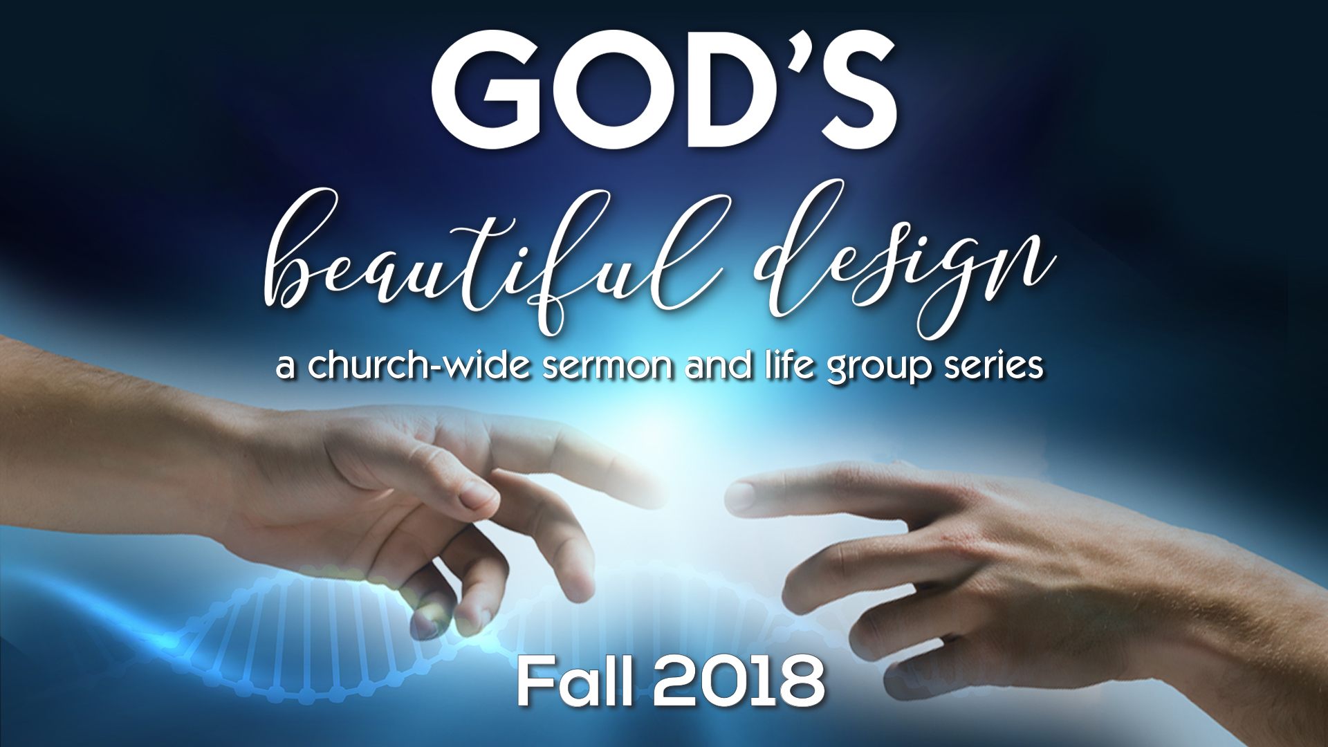 God's Beautiful design, sermon series, life group series, Gulf Gate Church, biblical sexuality