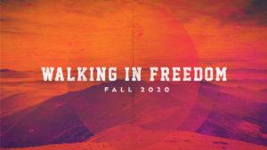 walking in freedom, life group, Chris miller