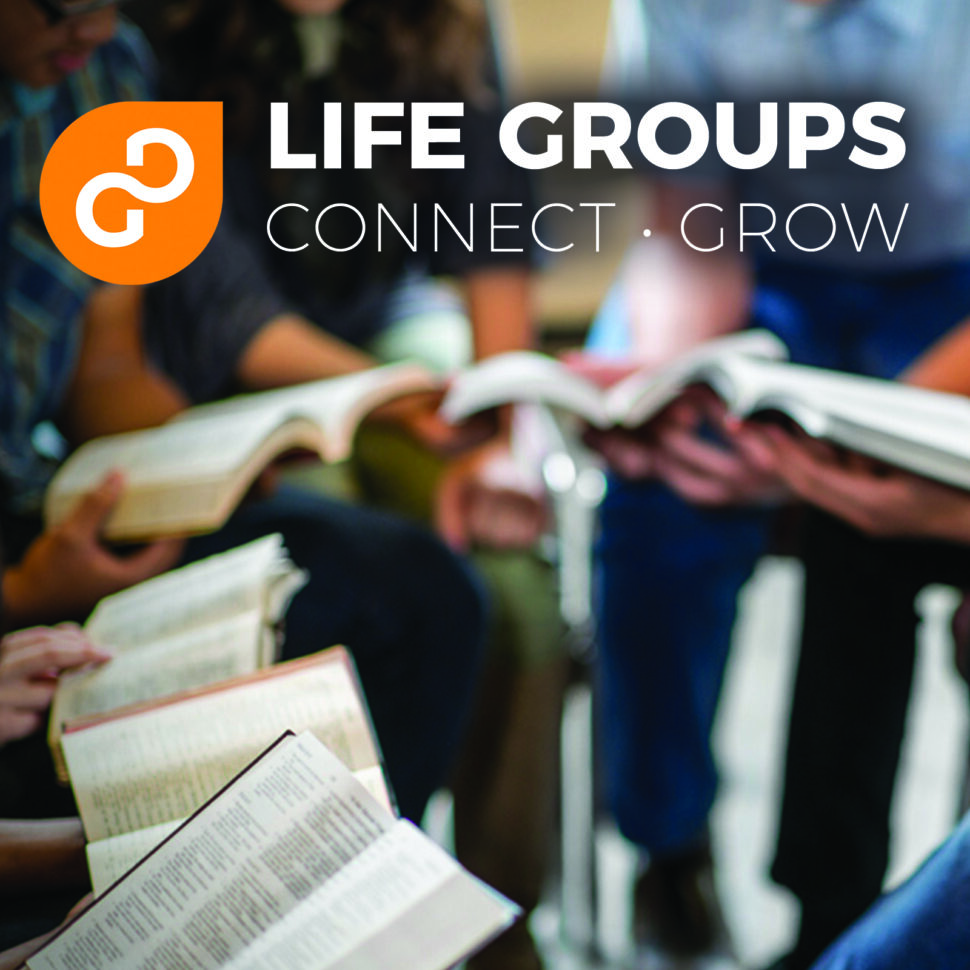 life groups, small groups